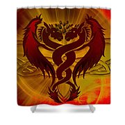 Dragon Duel Series 5 Shower Curtain