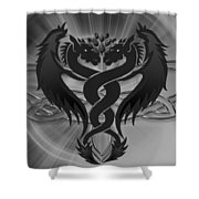 Dragon Duel Series 8 Shower Curtain
