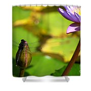 Dragon Fly On Bud And Water Lily Horizontal Number One Shower Curtain