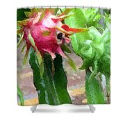 Dragon Fruit Also Know As Pitaya Or Pitahaya Shower Curtain