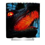 Dragon Speak Shower Curtain