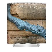 Dragon Waterspout  Chateau De Cormatin Shower Curtain