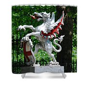 Dragon With St George Shield Shower Curtain