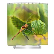 Dragonfly Days II Shower Curtain
