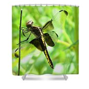 Dragonfly Female Widow Skimmer Shower Curtain