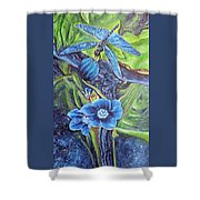 Dragonfly Hunt For Food In The Flowerhead Shower Curtain