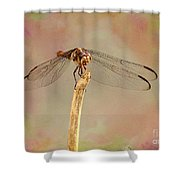 Dragonfly In Fantasy Land Shower Curtain