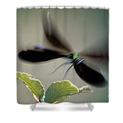 Dragonfly In Flight Shower Curtain