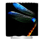 Dragonfly - Insect  7128-005 Shower Curtain