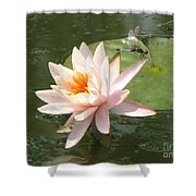 Dragonfly Landing Shower Curtain