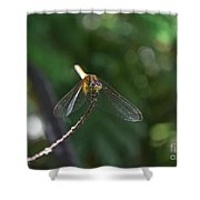 Dragonfly Shower Curtain