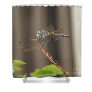 Dragonfly Profile Shower Curtain