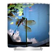 Dragonfly Reflecting On A Beautiful Day Shower Curtain