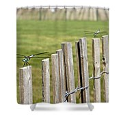 Dragonfly Runway Shower Curtain