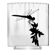 Dragonfly Silhouette Shower Curtain