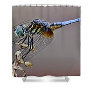 Dragonfly Stance Shower Curtain