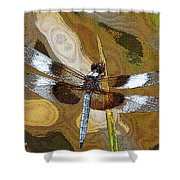 Dragonfly Waiting For A Fly Shower Curtain