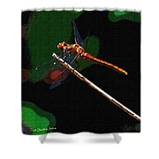 Dragonfly Waits Shower Curtain