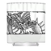 Dragon's Fire Shower Curtain