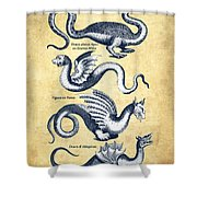 Dragons - Historiae Naturalis  - 1657 - Vintage Shower Curtain