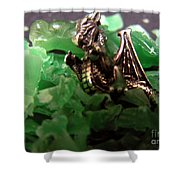 Dragon's Hoard  Shower Curtain