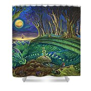 Dragon's Slumber  Shower Curtain