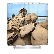 Dragon's Teeth Closeup Shower Curtain