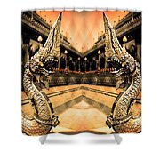 Dragon's Temple Shower Curtain