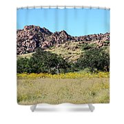Dragoon Mountains Shower Curtain