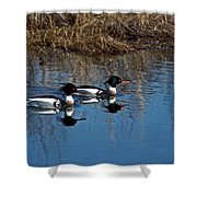 Drakes A Pair Shower Curtain by Skip Willits