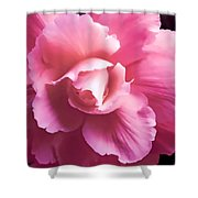 Dramatic Pink Begonia Floral Shower Curtain