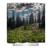 Dramatic Rainier Flower Meadows Shower Curtain