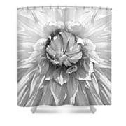 Dramatic White Dahlia Flower Monochrome Shower Curtain