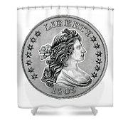 Draped Bust Liberty Shower Curtain