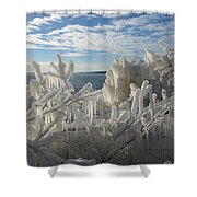 Draped In Icy Beauty Shower Curtain