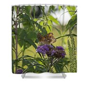 Draped In Spangled Glory Shower Curtain