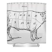 Drawing Of A Bullock Marked To Show Eighteen Different Cuts Of Meat Shower Curtain by English School