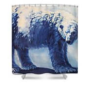 Dream Bear Shower Curtain