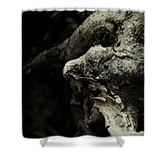Dream Chanter Shower Curtain by Rebecca Sherman