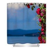 Dream Full Of Roses Shower Curtain