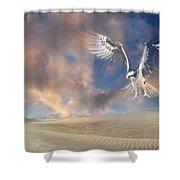 Dream Hawk Shower Curtain