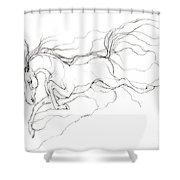 Dream Horse Shower Curtain by Angel  Tarantella