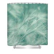 Dream Shower Curtain by Kim Hojnacki