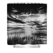 Dream Of Better Days-bw Shower Curtain