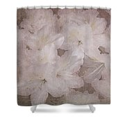 Dream Of Home Shower Curtain