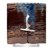 Dream Of Sailing Shower Curtain