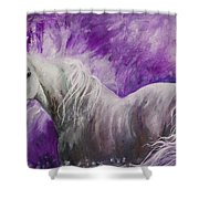 Dream Stallion Shower Curtain