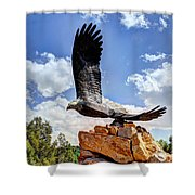 Dream Your Eagle And Fly With Him Shower Curtain
