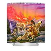 Dreamcatcher 8 Shower Curtain
