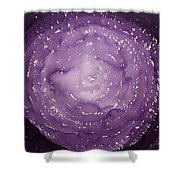 Dreamcatcher Original Painting Shower Curtain